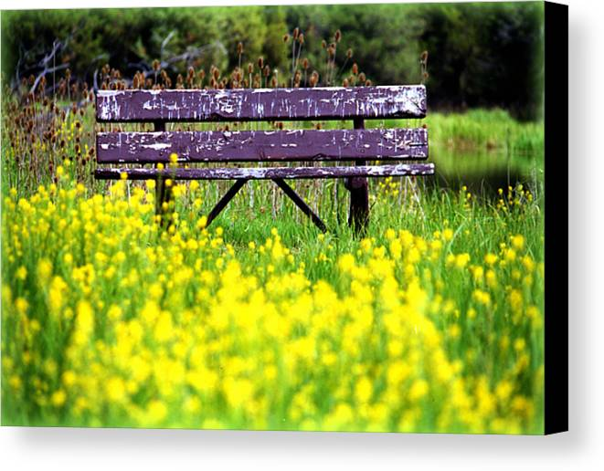 Activity Canvas Print featuring the photograph Wooden Bench by Emanuel Tanjala