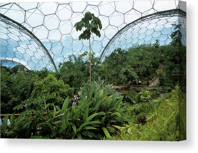 Eden Project Biome Canvas Print