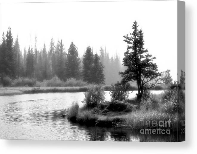 Lakes Canvas Print featuring the photograph Misty Morning by Roland Stanke