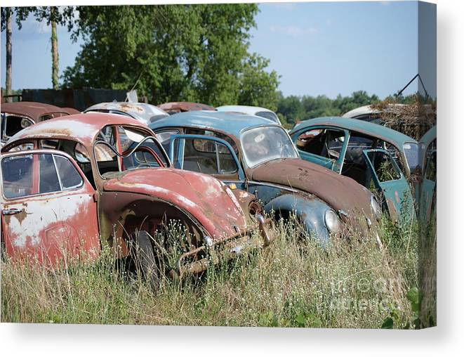 Volkswagon Canvas Print featuring the photograph Bug15 by John Turner
