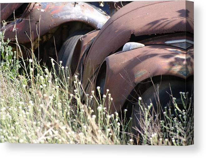 Volkswagon Canvas Print featuring the photograph Bug22 by John Turner
