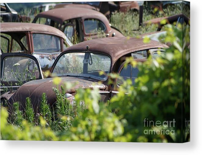 Volkswagon Canvas Print featuring the photograph Bug27 by John Turner