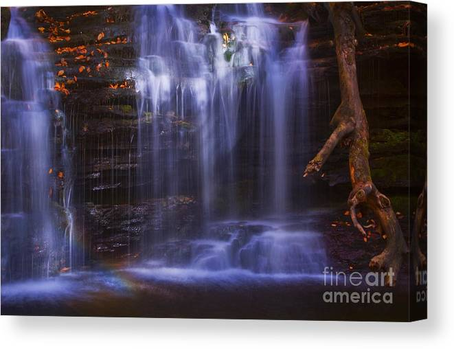 Ricketts Glen Canvas Print featuring the photograph Falls And Log by Paul W Faust - Impressions of Light