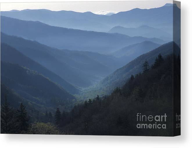 Landscape Canvas Print featuring the photograph First Light On Clingman's Dome by Sandra Bronstein