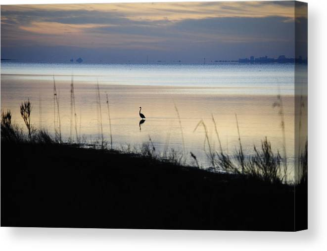 Beach Canvas Print featuring the photograph Morning Solitude by Michele Kaiser