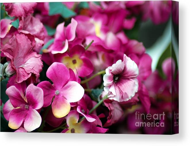 Flowers Canvas Print featuring the photograph Pink Canvas Flora by Optical Playground By MP Ray