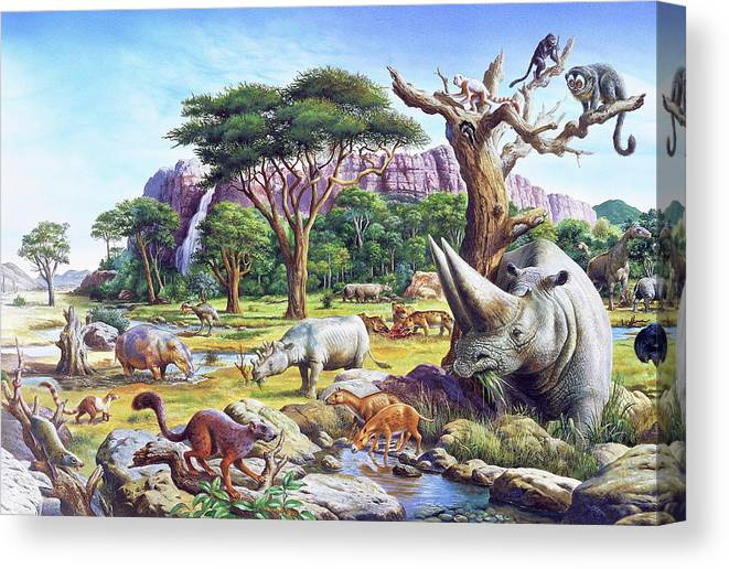 Chiracus Canvas Print featuring the photograph Primitive Mammals by Christian Jegou Publiphoto Diffusion/ Science Photo Library