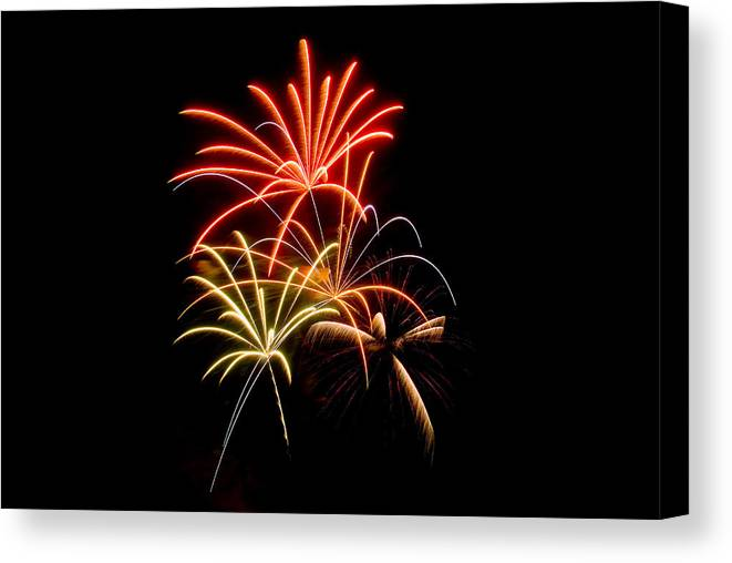 Fireworks Canvas Print featuring the photograph Red Blue Green Flowers by Devinder Sangha