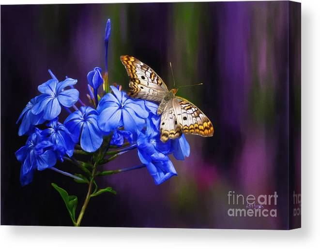 Butterfly Canvas Print featuring the digital art Silver And Gold by Lois Bryan