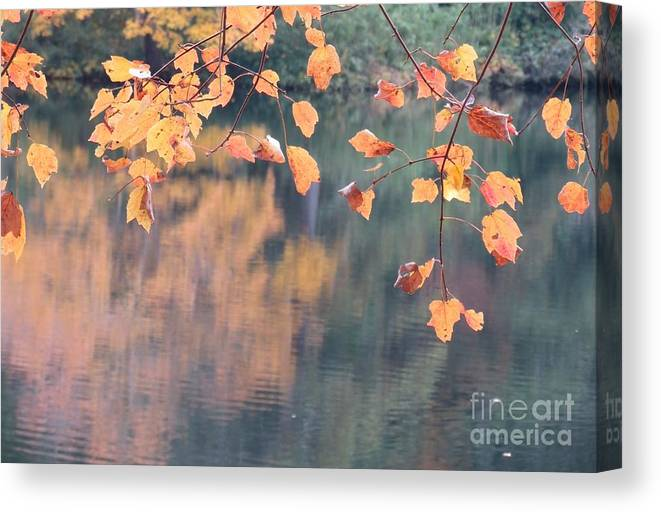 Reflections Canvas Print featuring the photograph Subtle Autumn Reflections by Anita Adams