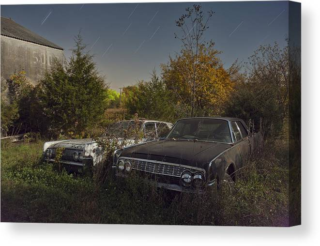 Tom Phelan Canvas Print featuring the photograph Two Of A Kind II by Tom Phelan