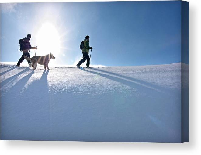 Greg Moore Canvas Print featuring the photograph Snowshoe by Elijah Weber