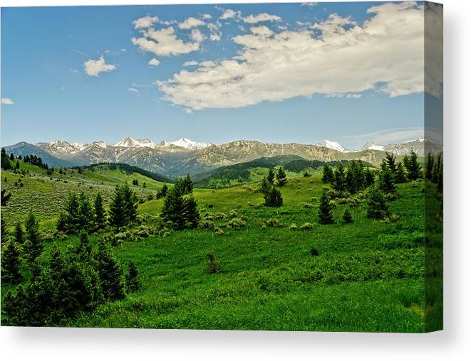 Americas Canvas Print featuring the photograph Bridger Mountain View by Roderick Bley