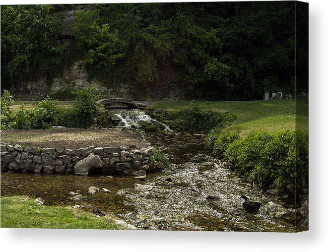 Spring Canvas Print featuring the photograph Big Spring Park by Judy Hall-Folde