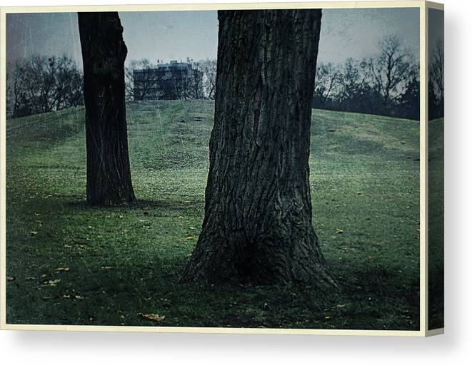Grove Canvas Print featuring the photograph Grove by Janos Vajda