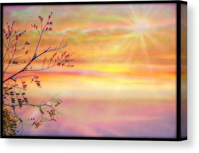 Sunrise Canvas Print featuring the photograph Leaves In The Sun by Jeanette Hiestand