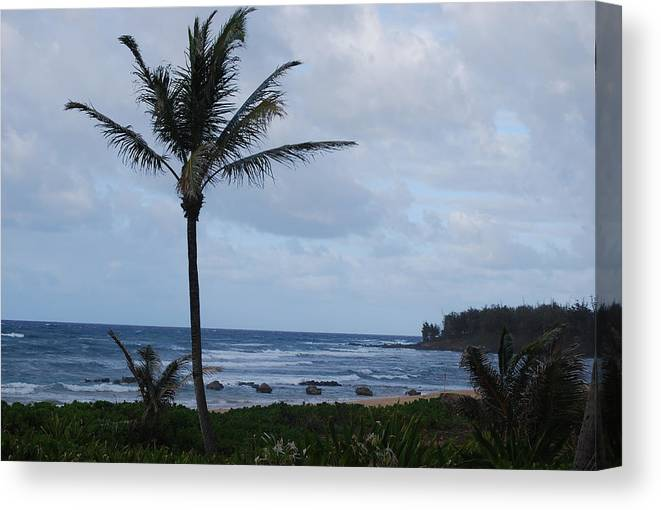 Beach Canvas Print featuring the photograph Morning View by Cheryl Adams