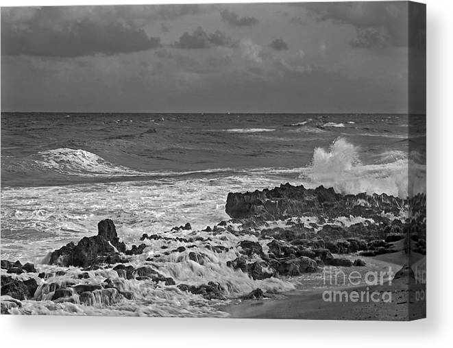 Black & White Photography Canvas Print featuring the photograph Rock Reef by Richard Nickson