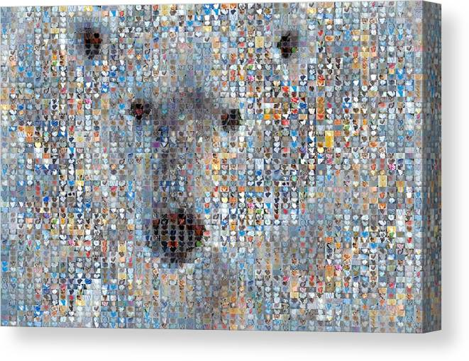 Heart Images Canvas Print featuring the photograph Holiday Hearts Polar Bear by Boy Sees Hearts