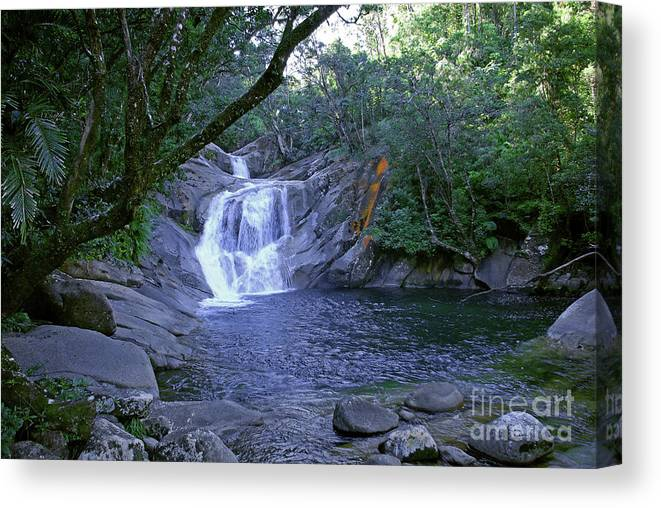 Tropical Canvas Print featuring the photograph Josephine Falls And Tropical Pool by Kerryn Madsen- Pietsch