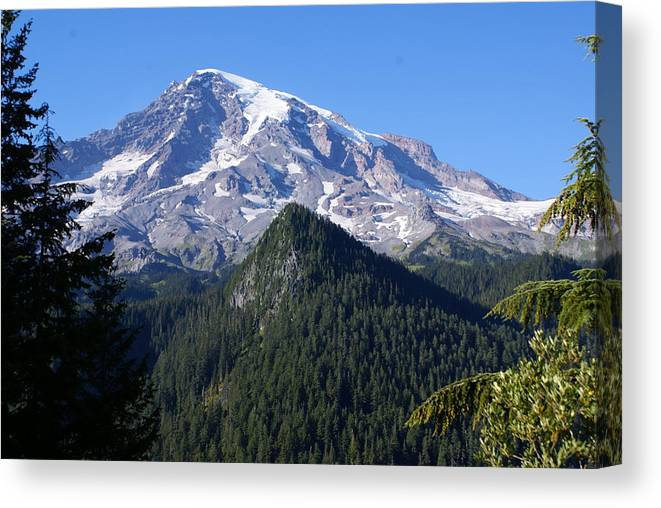 National Park Canvas Print featuring the photograph Mount Rainier by Sonja Anderson