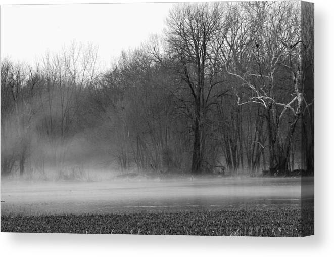Fog Canvas Print featuring the photograph Afternoon Fog Rising by Michelle Hastings
