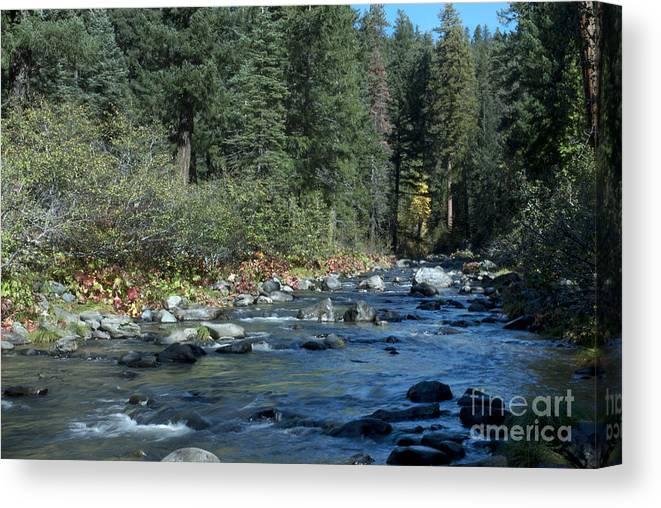 Landscape Canvas Print featuring the photograph Along Deer Creek by Richard Verkuyl