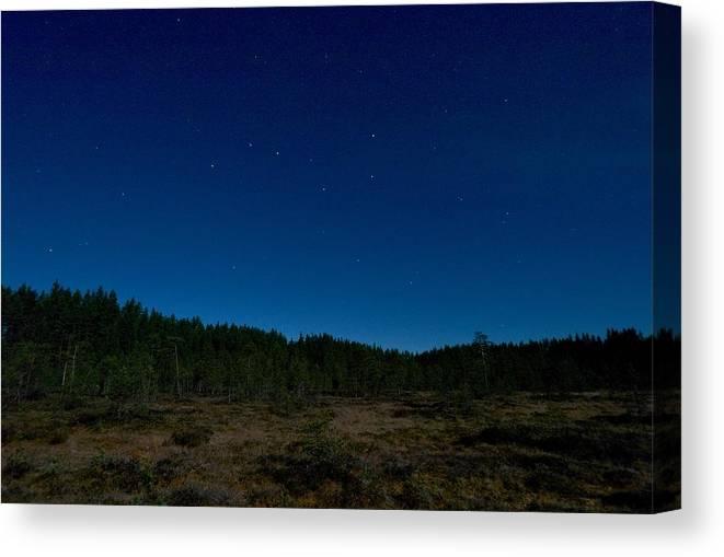 Lehtokukka Canvas Print featuring the photograph Autumn Stars by Jouko Lehto