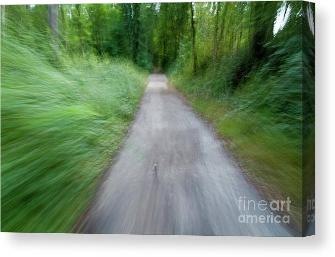 Active Canvas Print featuring the photograph Dirt Path And Surrounding Bush Seen From A Cyclist's Point Of View by Sami Sarkis