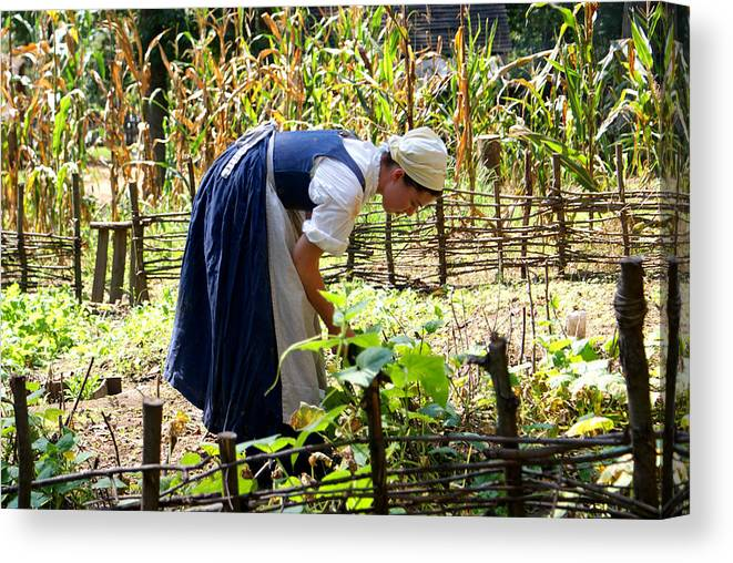 Woman Canvas Print featuring the photograph Early Settler Farming by Jean Haynes