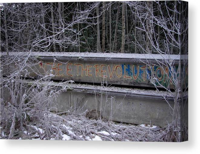 Che Canvas Print featuring the photograph Frozen Revolution by Cindy Johnston