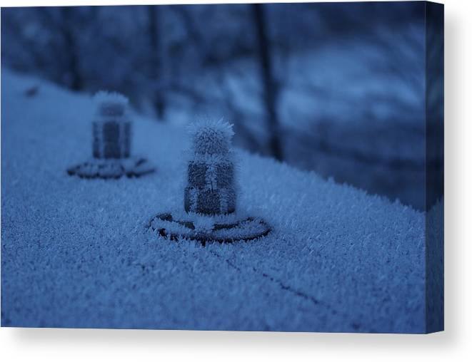 Ice Canvas Print featuring the photograph Ice Bolts by Cindy Johnston