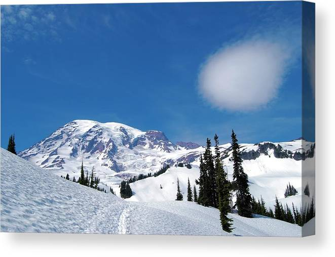Canvas Print featuring the photograph Mt. Rainier In June by Tahomawind Photography