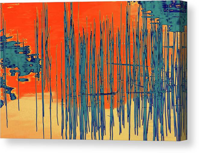 Water Canvas Print featuring the photograph On The Way To Tractor Supply 3 22 by Gary Bartoloni