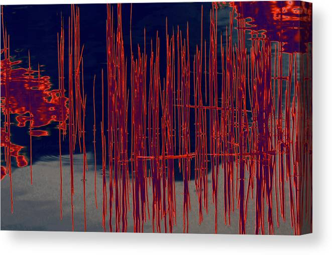 Water Canvas Print featuring the photograph On The Way To Tractor Supply 3 25 by Gary Bartoloni