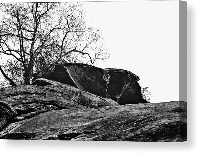 Landscape Canvas Print featuring the photograph Rock Wave by Steve Karol
