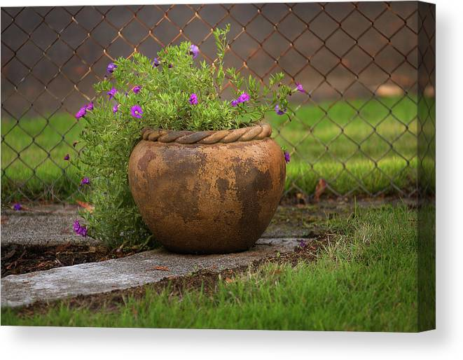 Landscapes Canvas Print featuring the photograph Rope Pot Flowers by Arthur Fix