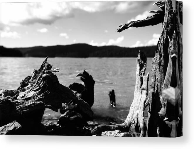 Stump Canvas Print featuring the photograph Stump Lake by Tom Melo