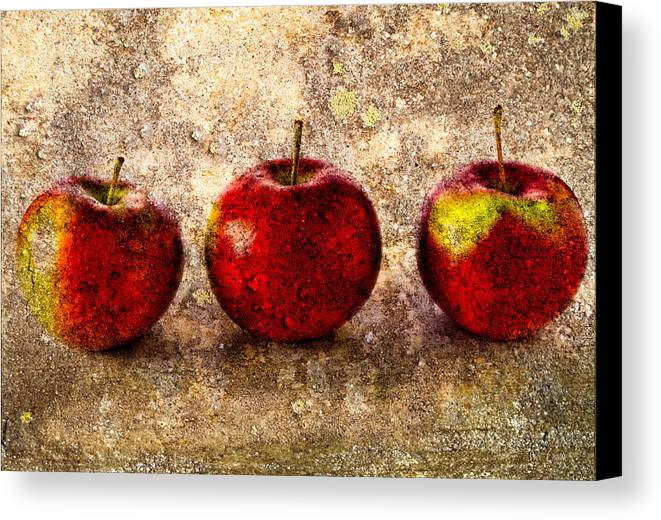 Apple Canvas Print featuring the photograph Apple by Bob Orsillo