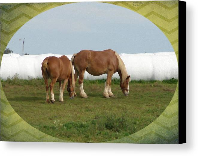 Draft Horse Canvas Print featuring the digital art Belgians by Cassie Peters