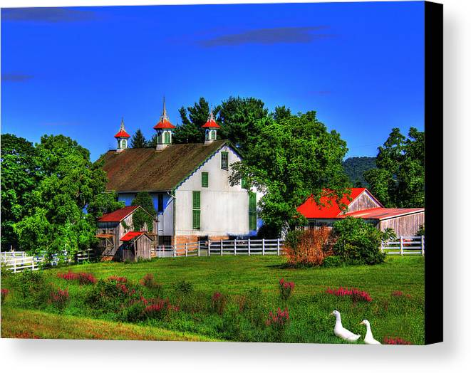 Country Canvas Print featuring the digital art Country Sunshine by Sharon Batdorf