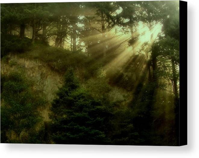 Sunrise Canvas Print featuring the photograph Early Morning by Katie Wing Vigil