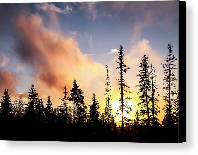 Alaska Canvas Print featuring the photograph Fire In The Sky by Michele Cornelius