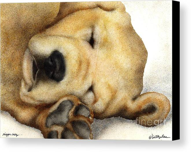 Will Bullas Canvas Print featuring the painting Nipper Nap... by Will Bullas