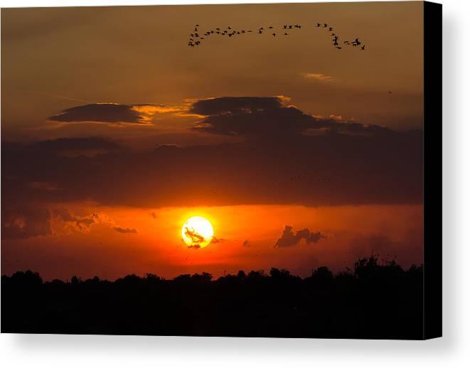 03041489450 Canvas Print featuring the photograph Okeechobee Sunset by Mark Little