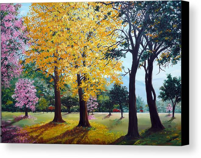 Tree Painting Landscape Painting Caribbean Painting Poui Tree Yellow Blossoms Trinidad Queens Park Savannah Port Of Spain Trinidad And Tobago Painting Savannah Tropical Painting Canvas Print featuring the painting Poui Trees In The Savannah by Karin Dawn Kelshall- Best