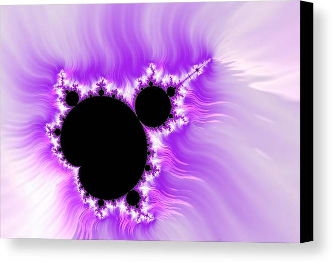 Purple Canvas Print featuring the digital art Purple White And Black Mandelbrot Set Digital Art by Matthias Hauser