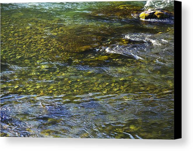 River Canvas Print featuring the photograph River Water 2 by Belinda Greb