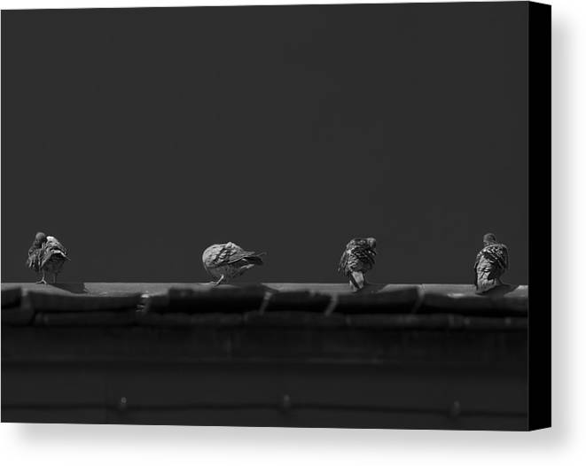Black And White Canvas Print featuring the photograph Sunday's Bath by Mario Celzner