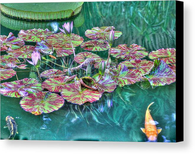 Greeting Canvas Print featuring the photograph Flower 12 by Albert Fadel
